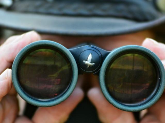 Bird Watching in Armenia