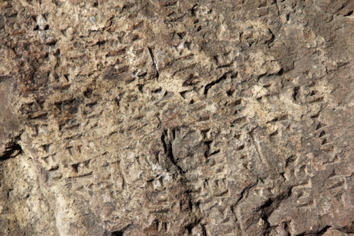 Urartu Cuneiform Inscription in Martuni